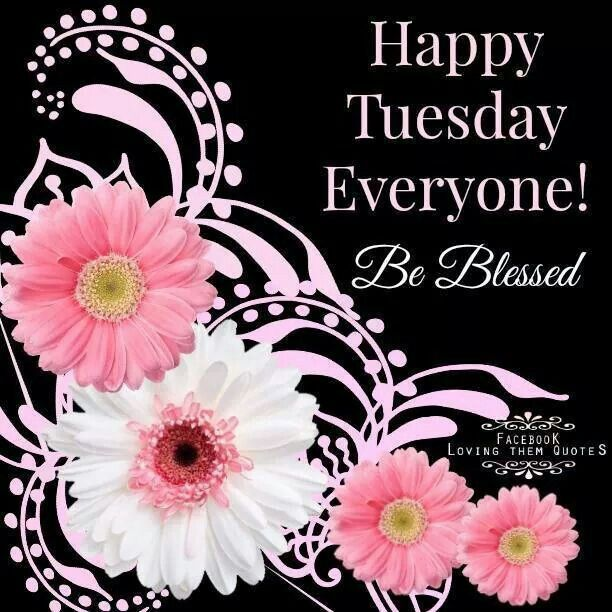 Happy Tuesday Everyone! Be Blessed Pictures, Photos, and