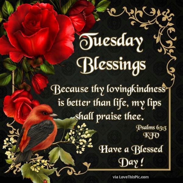tuesday blessings have a blessed day religious quote