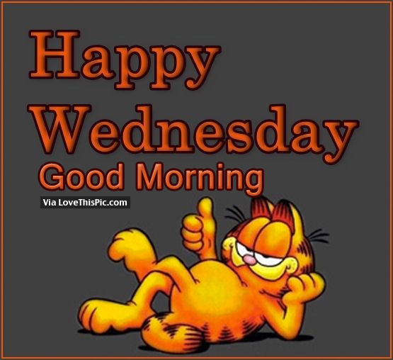Good Morning Happy Wednesday : Happy wednesday good morning pictures photos and images