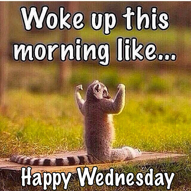 Woke Up This Morning Like....Happy Wednesday Pictures ...  Woke Up This Mo...