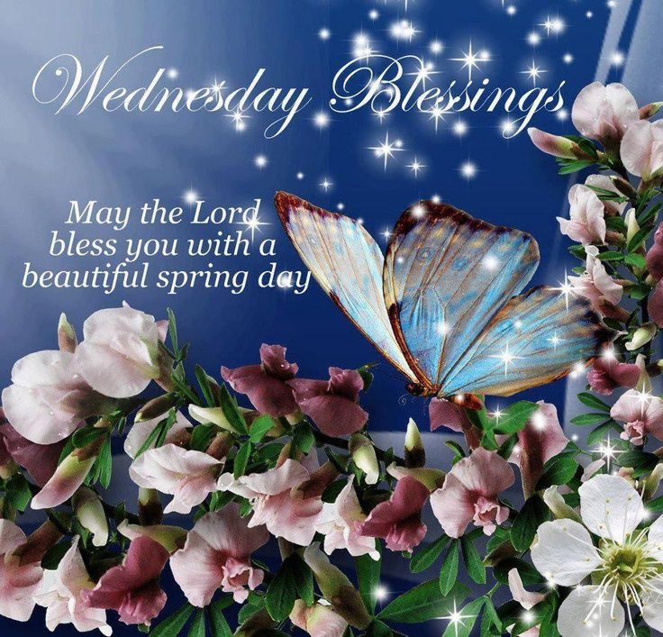 Beautiful Spring Pictures wednesday blessings, may the lord bless you with a beautiful