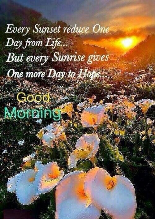Good Morning Every Sunrise Gives Hope Pictures, Photos