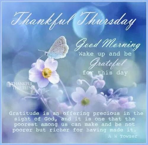 Thankful Thursday Quotes: Thankful Thursday Good Morning Pictures, Photos, And