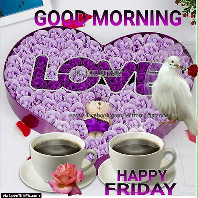 Good Morning My Love Happy Friday : Good morning happy friday love pictures photos and