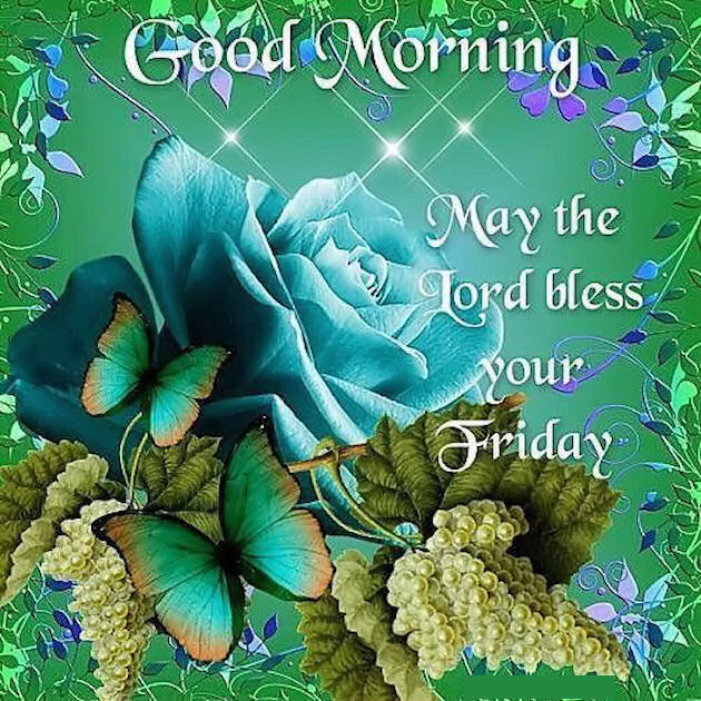 Good morning may the lord bless your friday quote pictures photos good morning may the lord bless your friday quote voltagebd Gallery