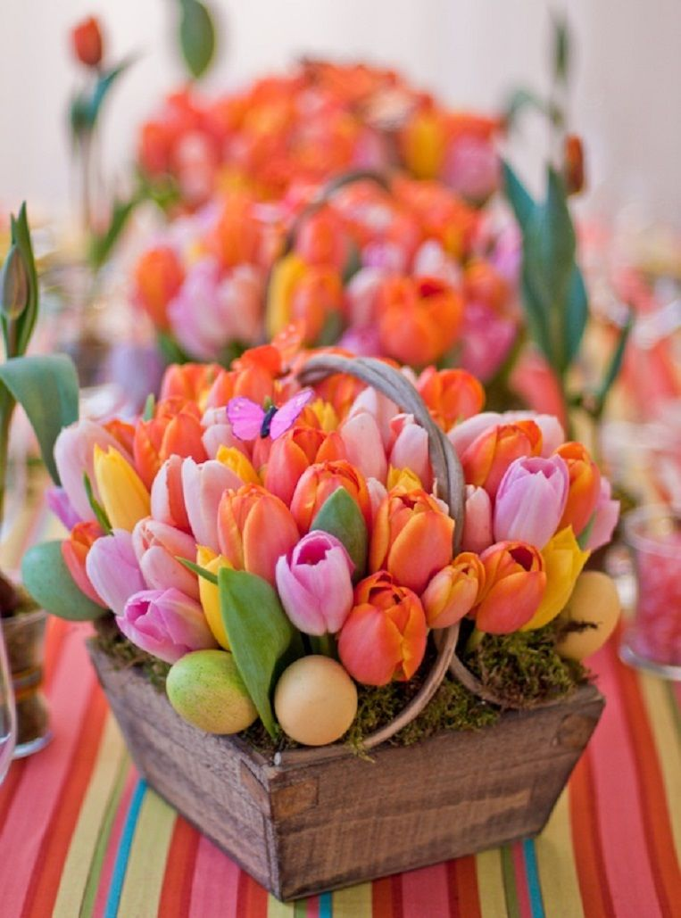 Bright colorful tulip centerpiece pictures photos and