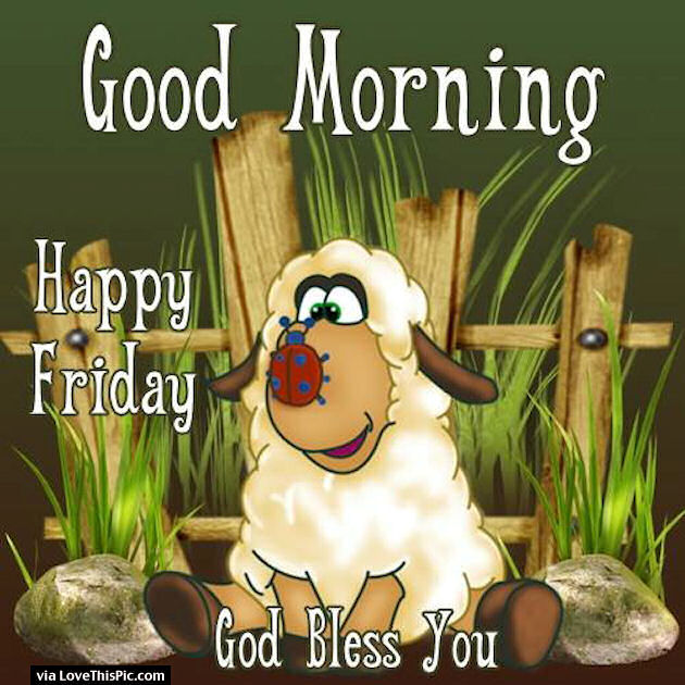 God Bless You Good Morning Friday Pictures, Photos, And