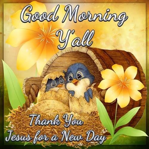 Good morning y all