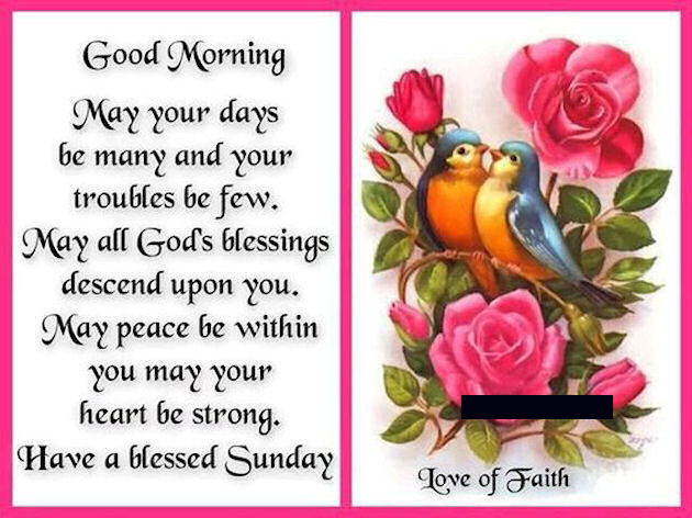 Good Morning And Have A Blessed Sunday Quote Pictures Photos And