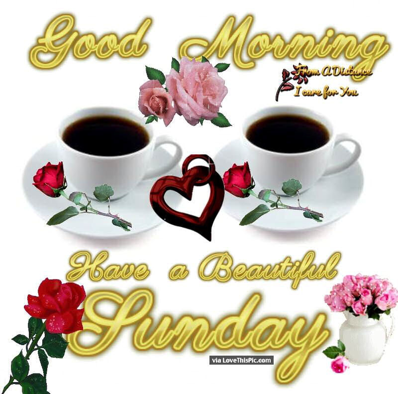 Good Morning Beautiful Sunday : Good morning have a beautiful sunday pictures photos and