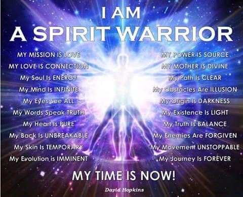 A Spiritual Warrior's Journey: The Inspiring Life Story Of A Mystical Warrior by W.H. McDonald