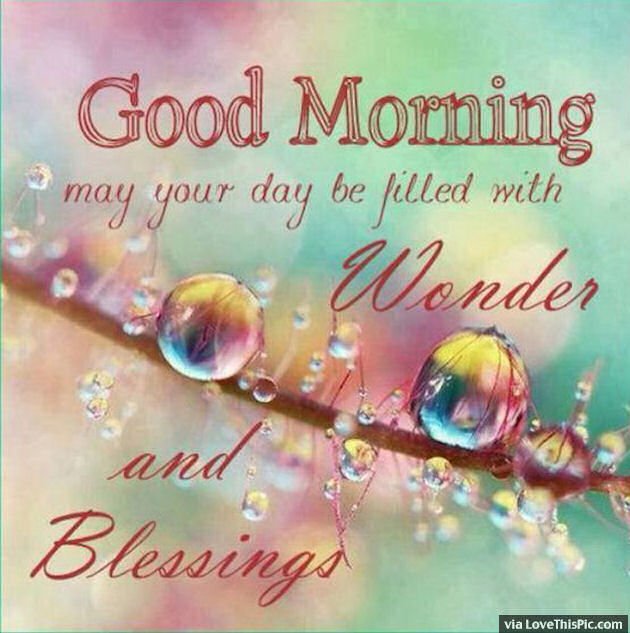 Good Morning May Your Day Be Filled With Wonder Pictures