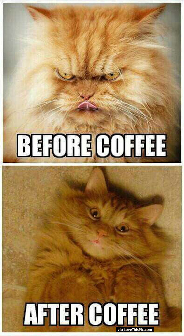 Me Before And After Coffee Quote Pictures Photos And Images For Facebook Tumblr Pinterest And Twitter