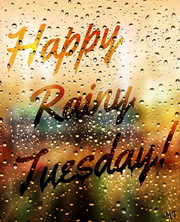 Happy Rainy Tuesday Quote Pictures Photos And Images For Facebook