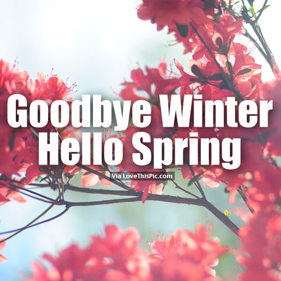 the gallery for gt goodbye winter hello spring quotes