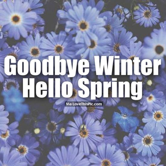 Goodbye Winter  Hello ...