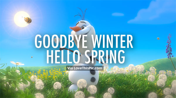 goodbye winter hello spring olaf pictures photos and