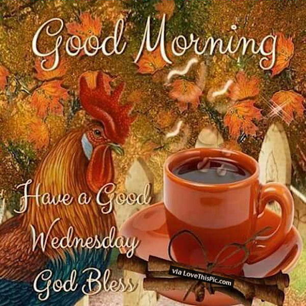 Good Morning Sunday Chicken : Good morning god bless happy wednesday pictures photos