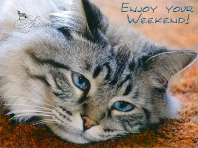 245811-Enjoy-Your-Weekend.jpg