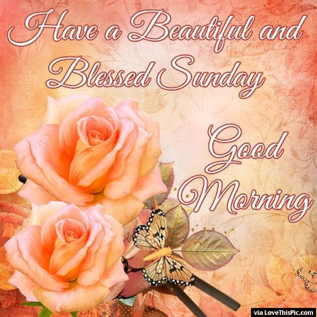 Good Morning My Love Have A Blessed Sunday : Have a beautiful and blessed sunday pictures photos