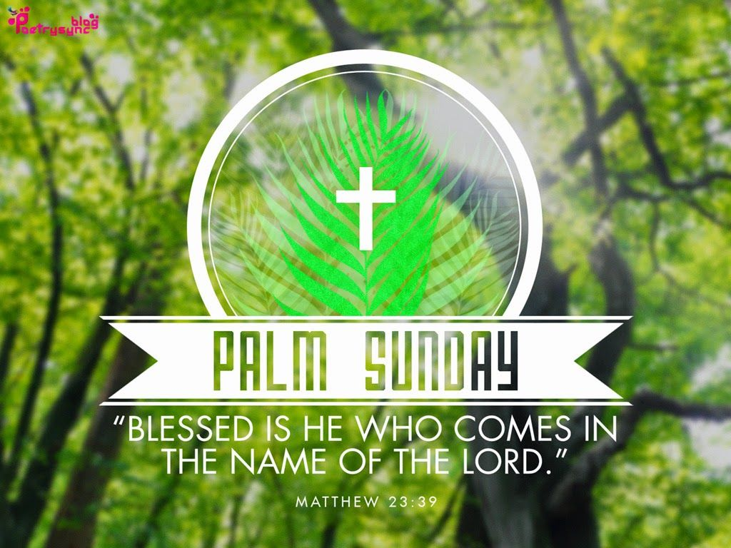 palm sunday blessed is he who comes i the name of the lord