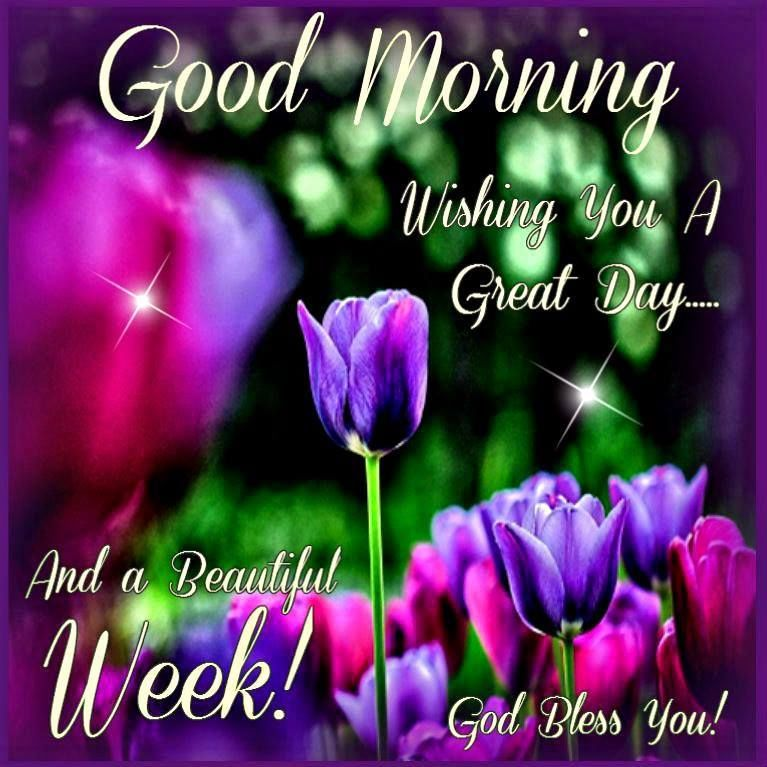 Wishing You A Great Weekend Quotes: Good Morning Have A Great Day And Week Pictures, Photos