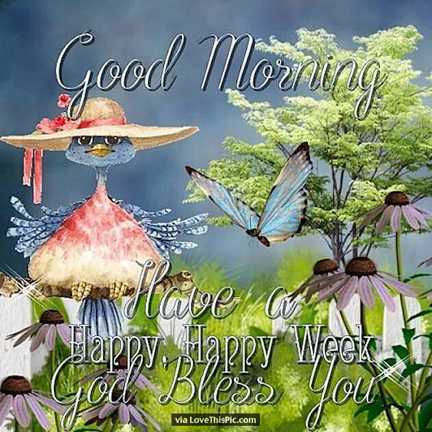 Good Morning God Bless Happy Monday Pictures Photos And Images For Facebook Tumblr Pinterest And Twitter