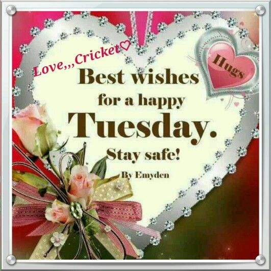 Best Wishes For A Happy Tuesday Pictures, Photos, And Images For Facebook,  Tu Design