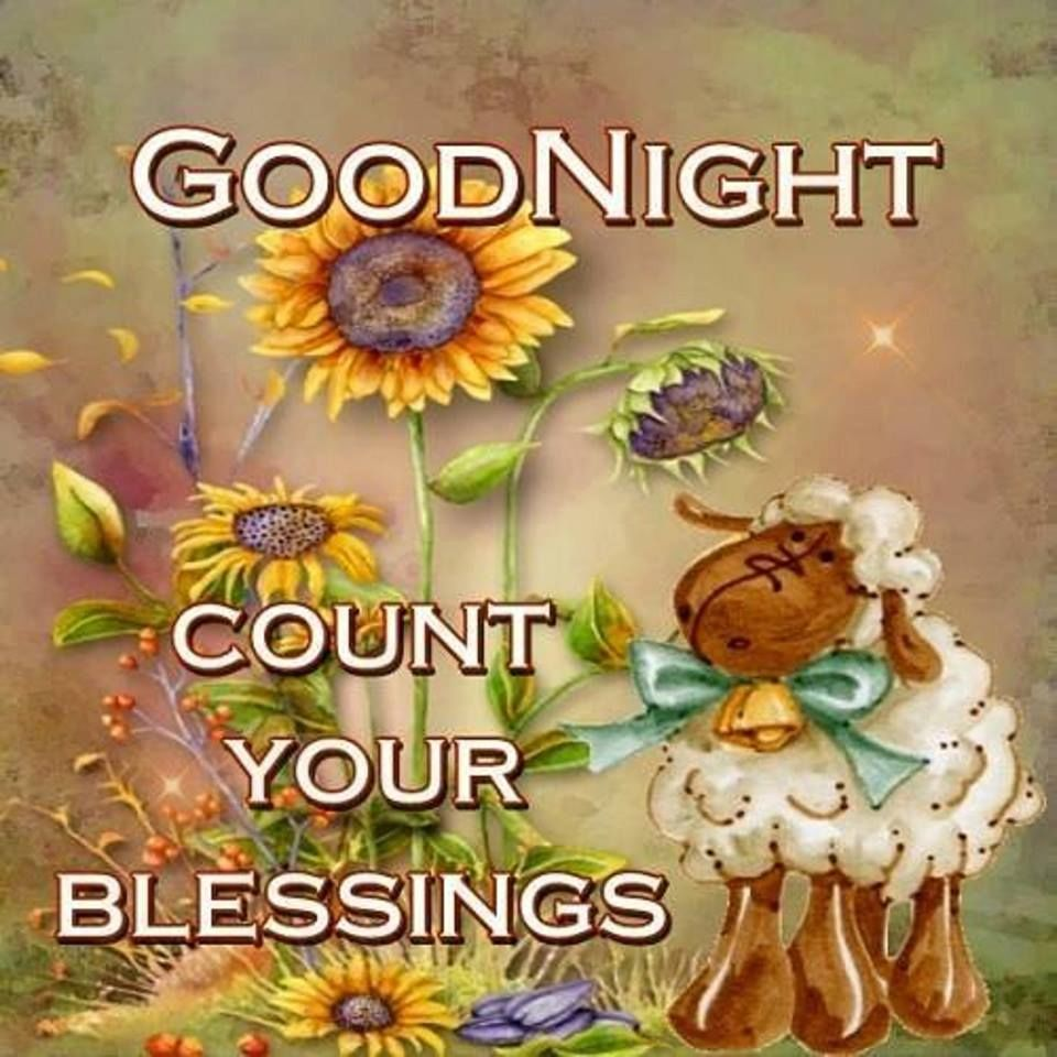 Good Night    Count Your Blessings Pictures, Photos, and