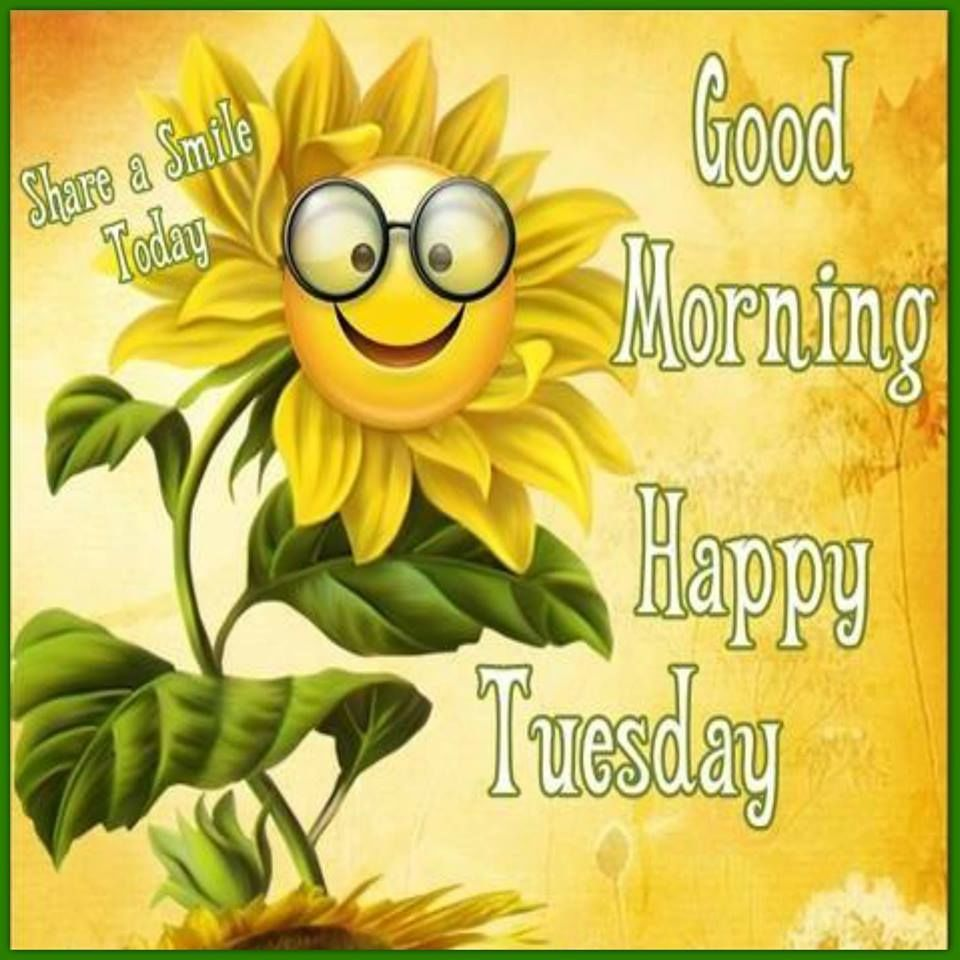 http://www.lovethispic.com/uploaded_images/246183-Good-Morning-Happy-Tuesday-Have-A-Smile-Day.jpg