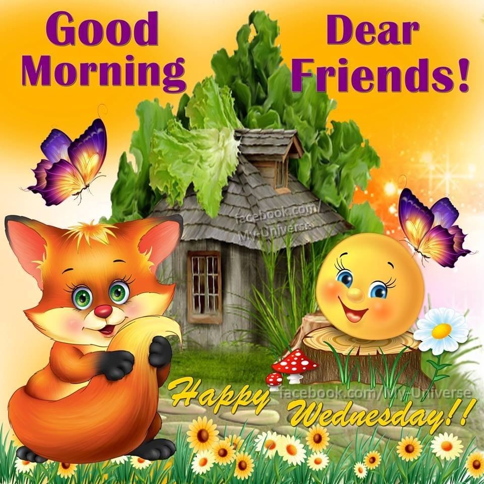 Hello wednesday pictures photos and images for facebook tumblr - Good Morning Dear Friends Happy Wednesday