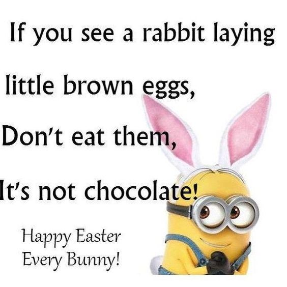 Happy Easter Pictures With Quotes: Happy Easter, Every Bunny! Pictures, Photos, And Images