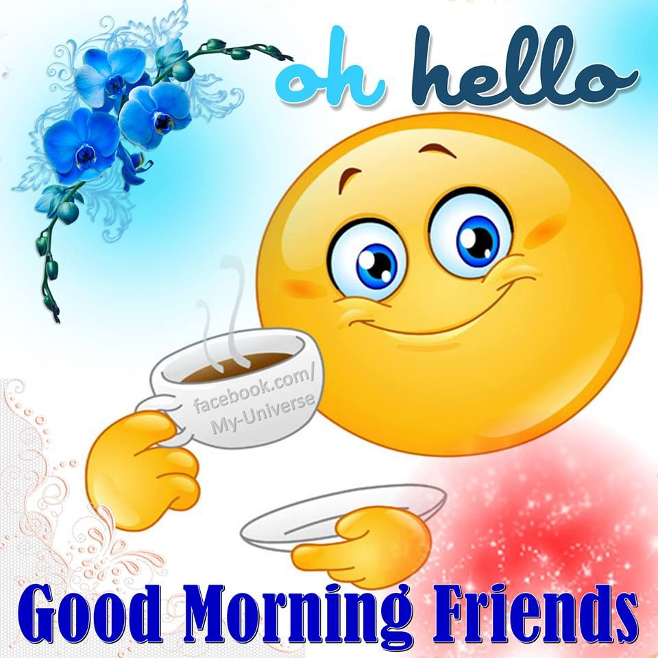 Oh Hello Good Morning Friends Pictures Photos And Images For
