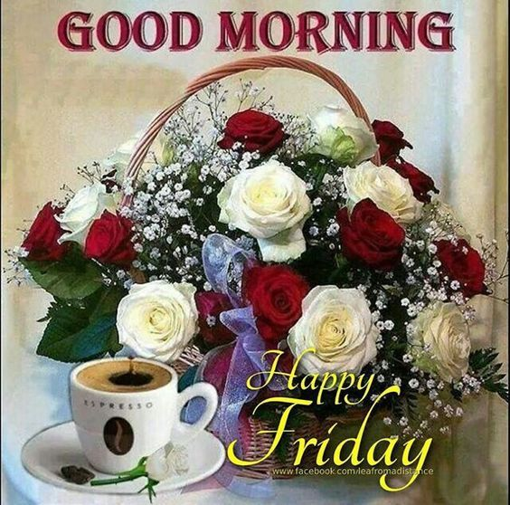 Good Morning Happy Friday Pictures Photos And Images For