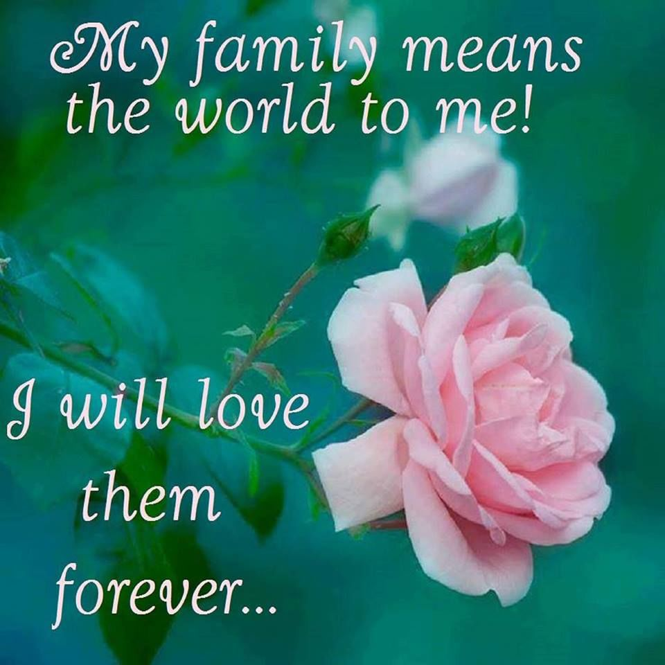 Love Quotes For My Love My Family Means The World To Me To Me Pictures Photos And Images