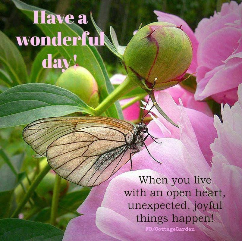 Have A Wonderful Day Spring Quote Pictures Photos And