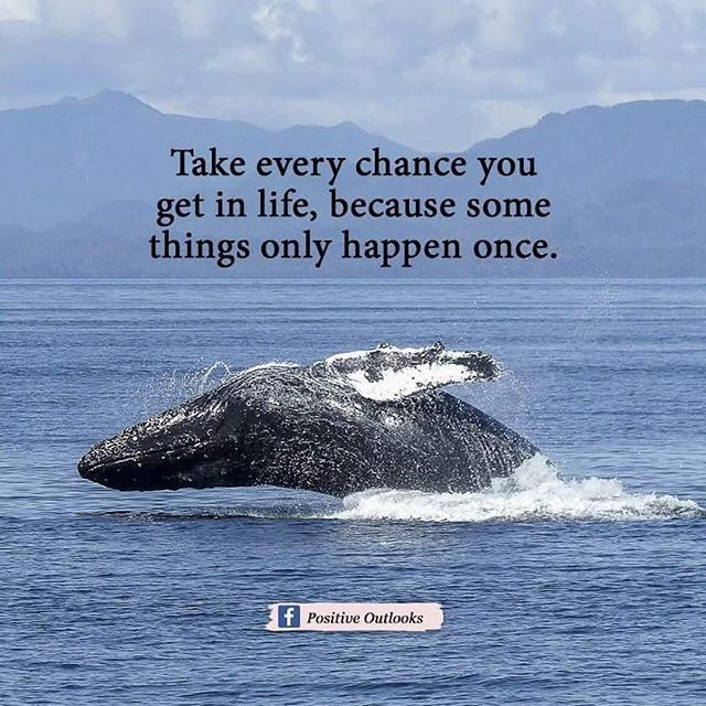 Take Every Chance You Get In Life, Because Some Things