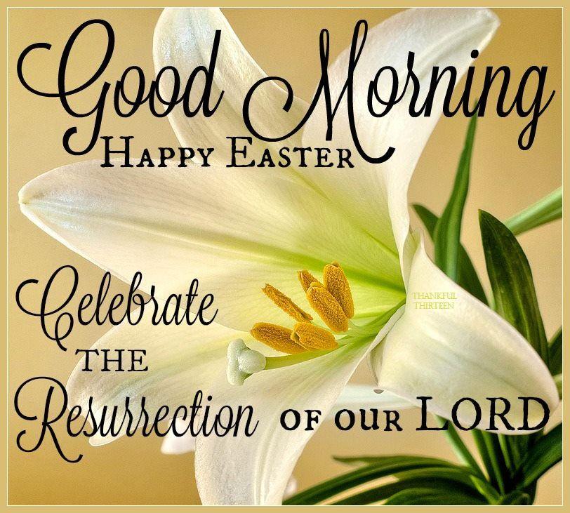 Good Morning Happy Easter Celebrate The Resurrection ...