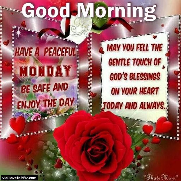 Good morning monday may you feel gods blessings pictures photos good morning monday may you feel gods blessings m4hsunfo