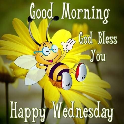 Wed Morning Quotes: Good Morning, God Bless You, Happy Wednesday Pictures