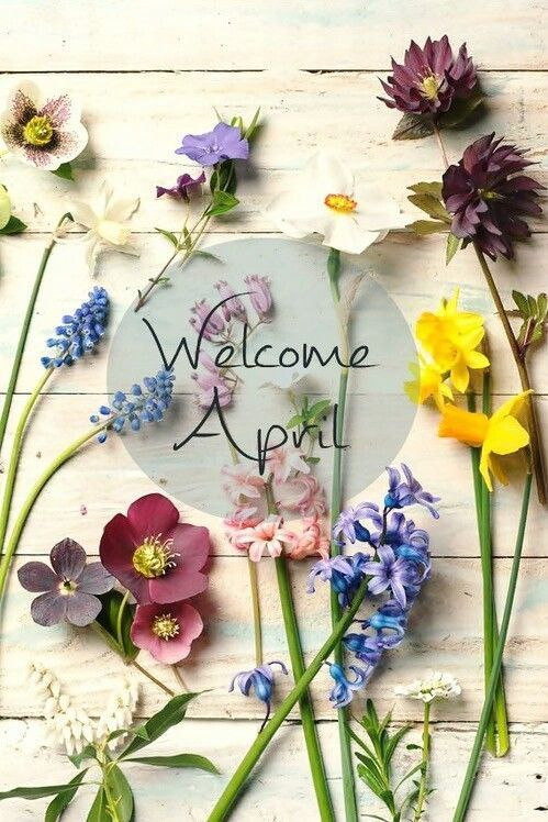 Risultati immagini per hello april with flowers
