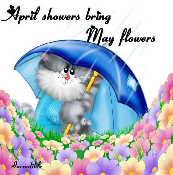 April Showers Bring May Flowers Pictures, Photos, and