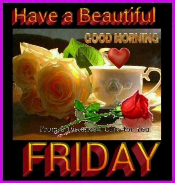 Have A Beautiful Friday Morning