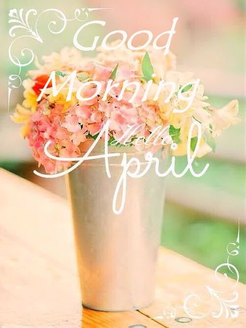 Good Morning Hello April Pictures Photos and Images for