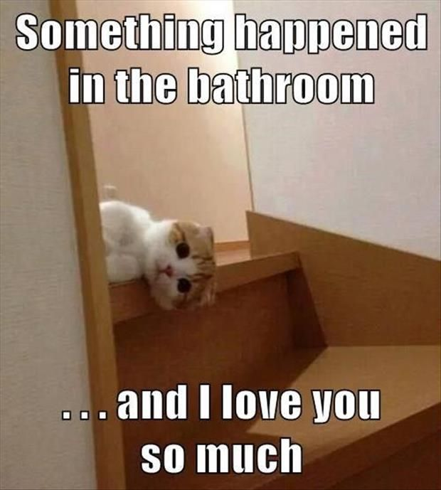 Something Happened In The Bathroom....And I Love You So ...