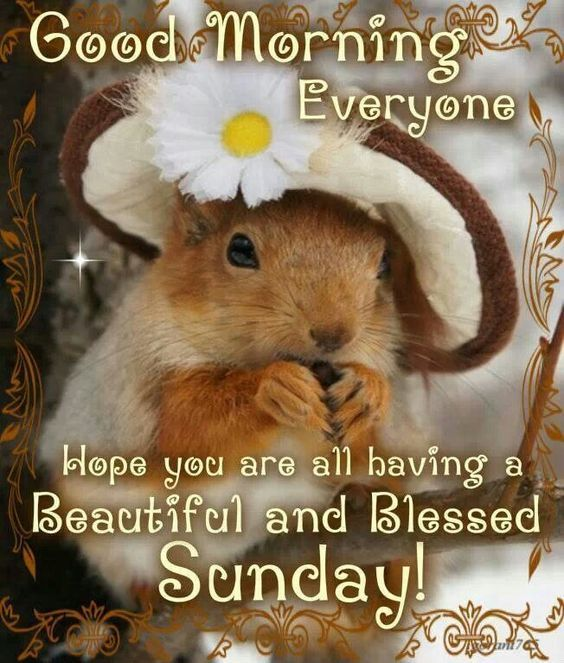 Image result for Beautiful sunday pinterest