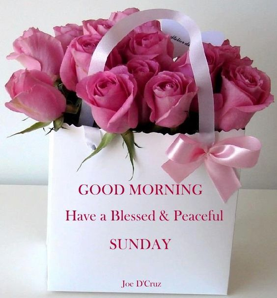 Good Morning Sunday For Her : Good morning have a blessed peaceful sunday pictures