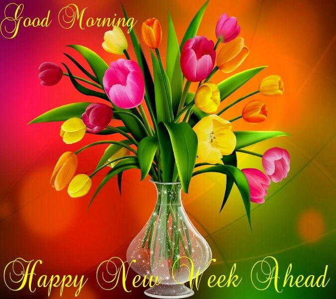 Image result for happy new week
