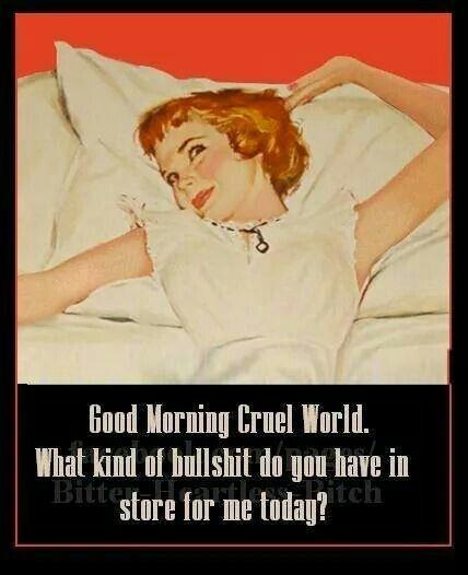 good morning cruel world