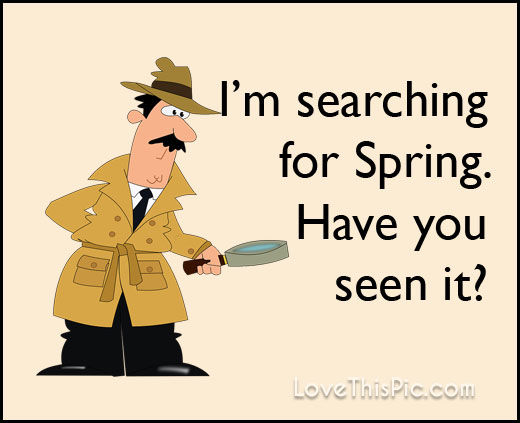 I M Searching For Spring Pictures Photos And Images For